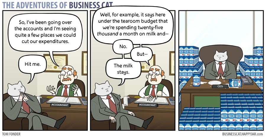 The Adventures of a Business Cat