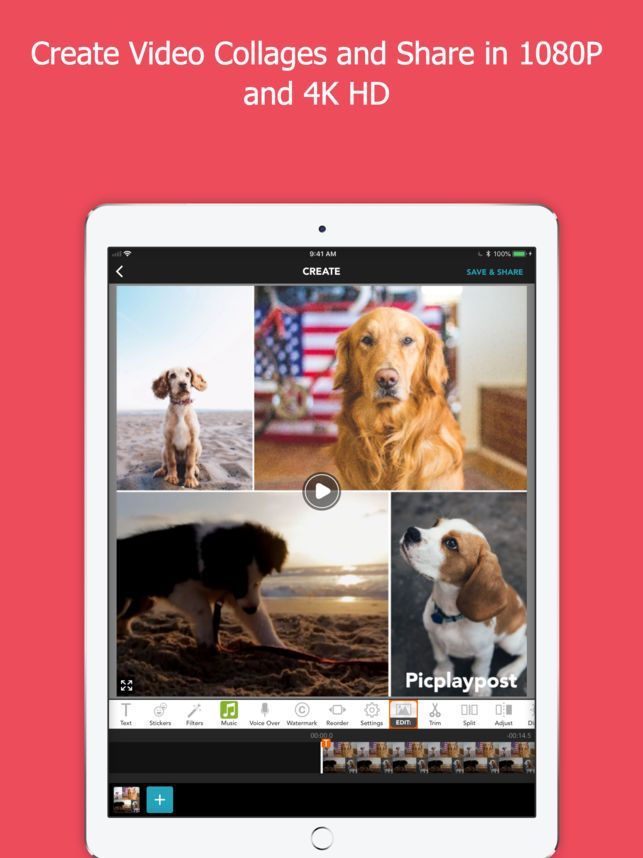 PicPlayPost Movie Video Editor on the App Store