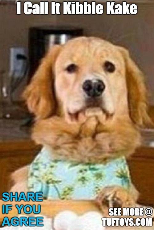 funny dog meme of labrador baking something in her kitchen this time kibble kake