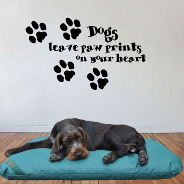Free shipping Ebay hot dogs leave paw prints on your heart Decorative Wall Art Mural Decal Sticker cute dog sayings quote dog002