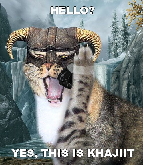 1 Funny Khajiit meme of cat answering phone