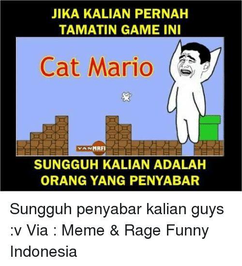 Memes Mario and Indonesia JIKA KALIAN PERNAH TAMATIN GAME INI Cat Mario MAFI