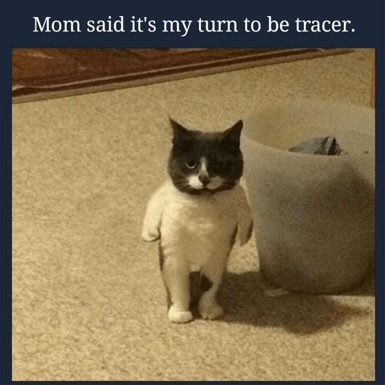 16 Freshly Harvested Dank Memes For The Weirdos Memebase Funny Memes