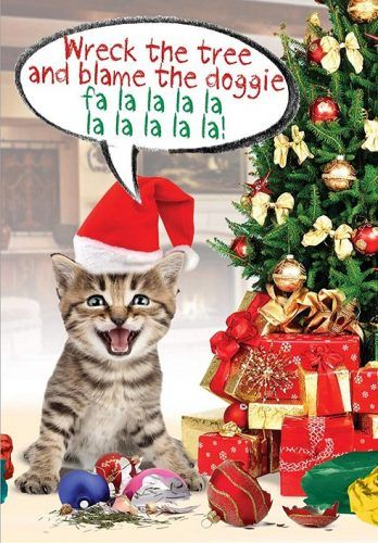 Interior 10 Cute And Funny Cat Christmas Cards Absolute Christmas Cat Christmas Cards Interior Decor