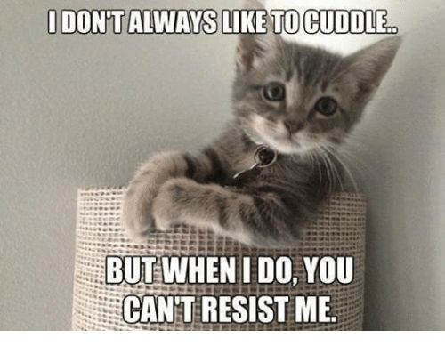 I Don t Always Like To Cuddle