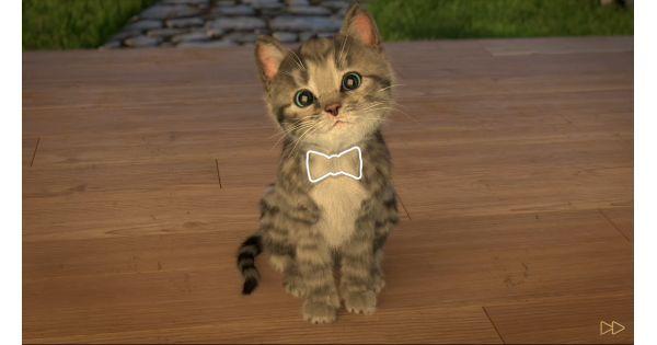 Little Kitten My Favorite Cat