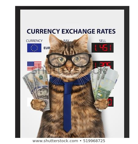 Currency exchange rate Funny cat is holding banknotes of Dollar and Euro Business theme