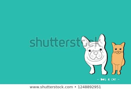 Funny smile face french bulldog and kitty Present animal friendship dog and cat Drawing