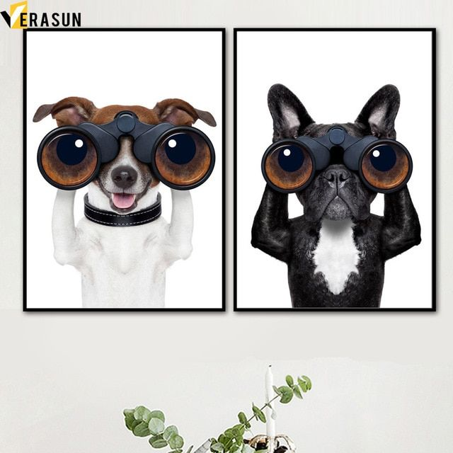 Collect the Unbelievable Funny Dog Framed Pictures