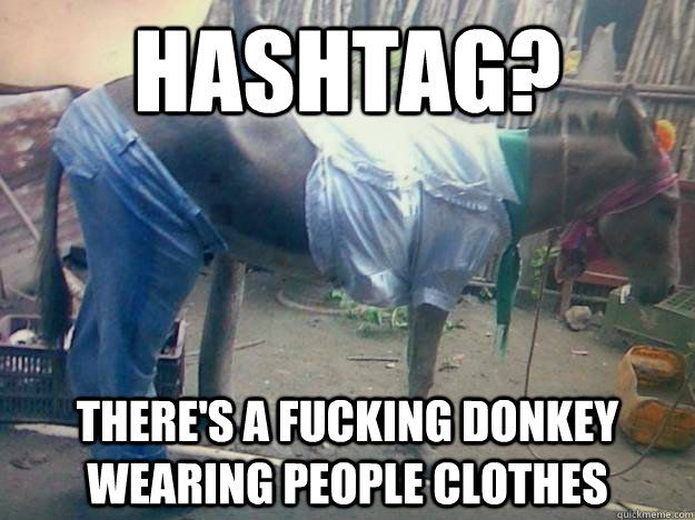 There s a fucking donkey wearing people clothes