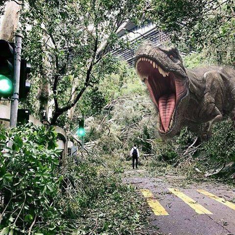 The typhoon creates memes Follow memeg o d for more Follow memeg o d