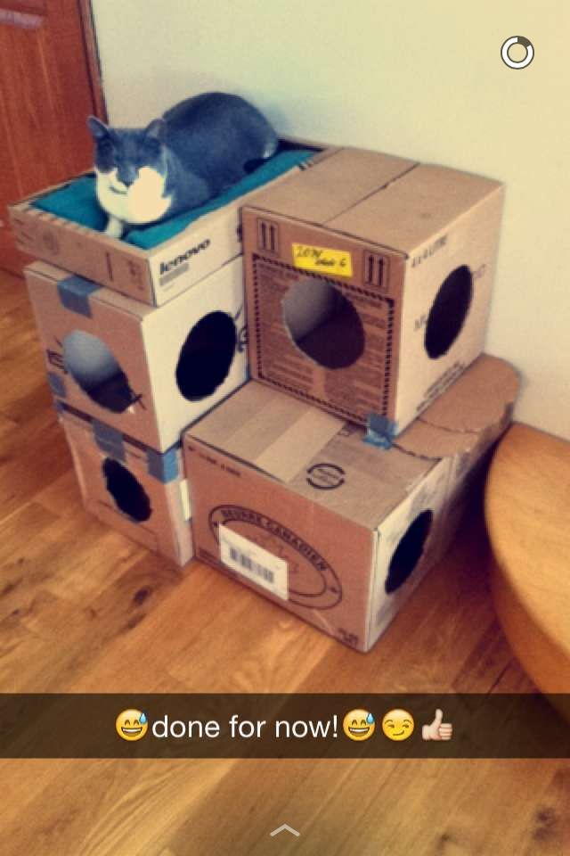 Diy cat house made of cardboard boxes It isn t pretty but it works