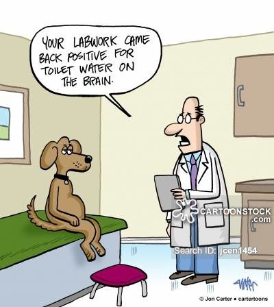 Ct Scans cartoons Ct Scans cartoon funny Ct Scans picture Ct Scans