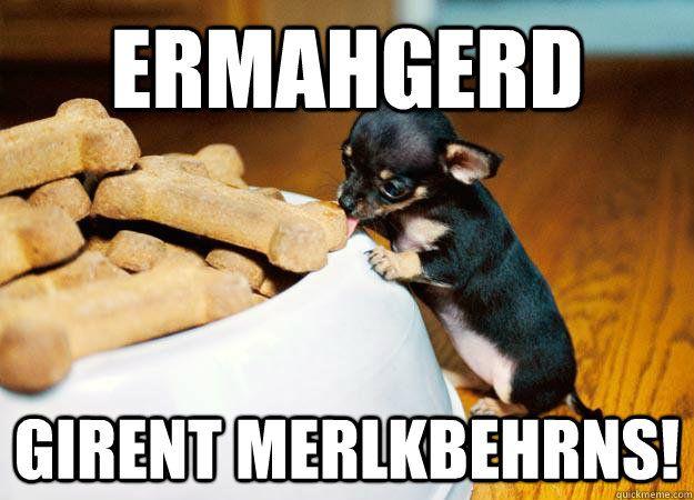 ERMAHGERD GIRENT MERLKBEHRNS ERMAHGERD ANIMALS quickmeme