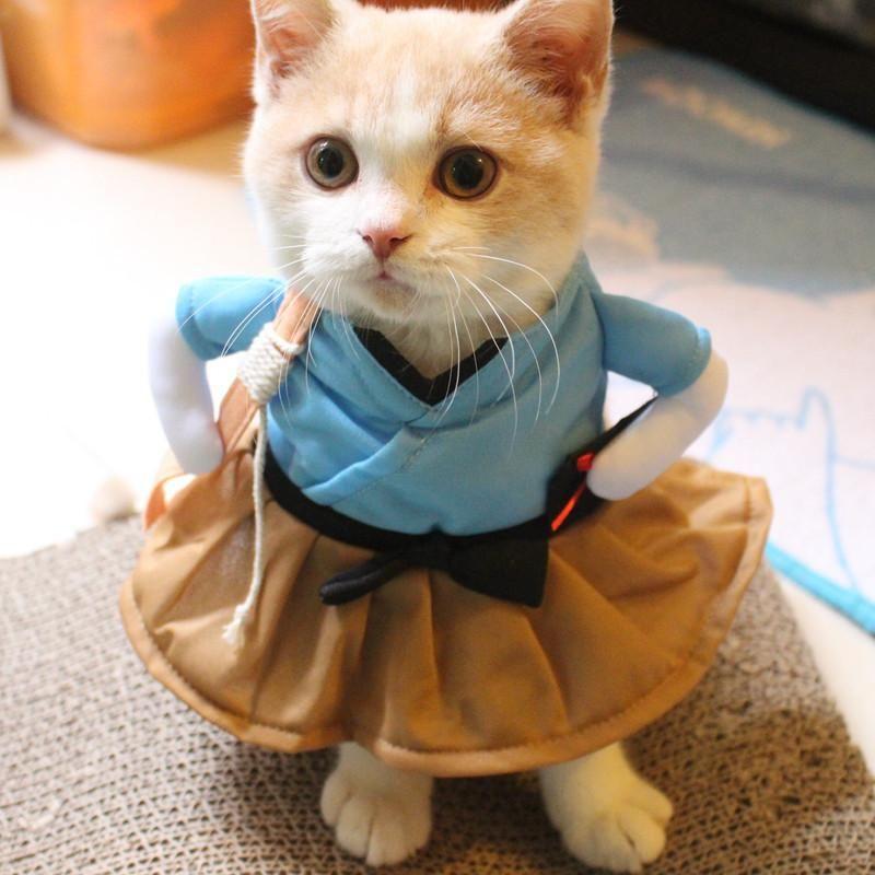Acheter Pet Chien Chat Costume Costume Vªtements Dr´le Dress Up Vªtements Partie Intéressant Transfiguration Chien Chat Chien Dr´le Cosplay Vªtements