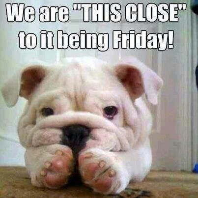 We are SO close to Friday Happy Thursday everyone chs Funny Quotes