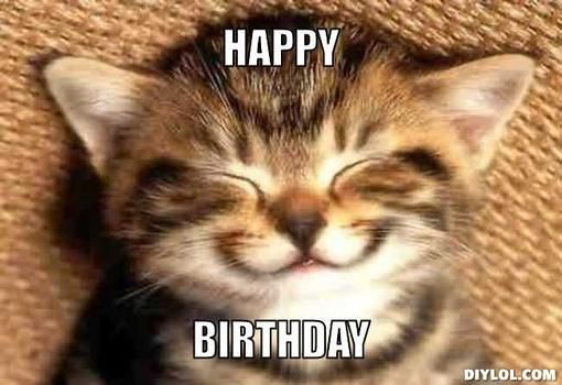 cat birthday meme Google Search partirvideos happybirthday Más