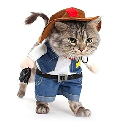 Meihejia Cute Cat Costume Funny Outfit for Cat and Small Dog Cowboy Jacket and