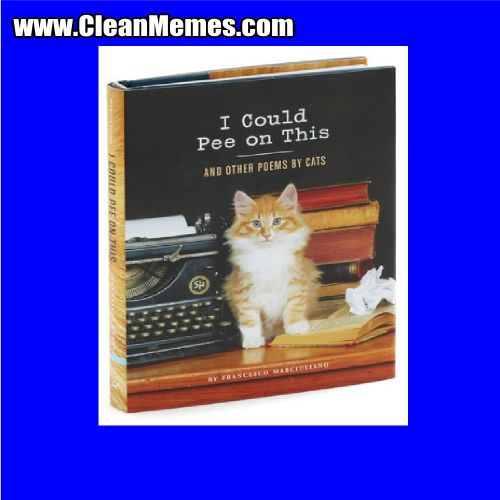 Author cleanmemesPosted on September 5 2015 Format ImageCategories Clean Funny Clean MemesTags Clean Funny Clean MemesLeave a ment on I