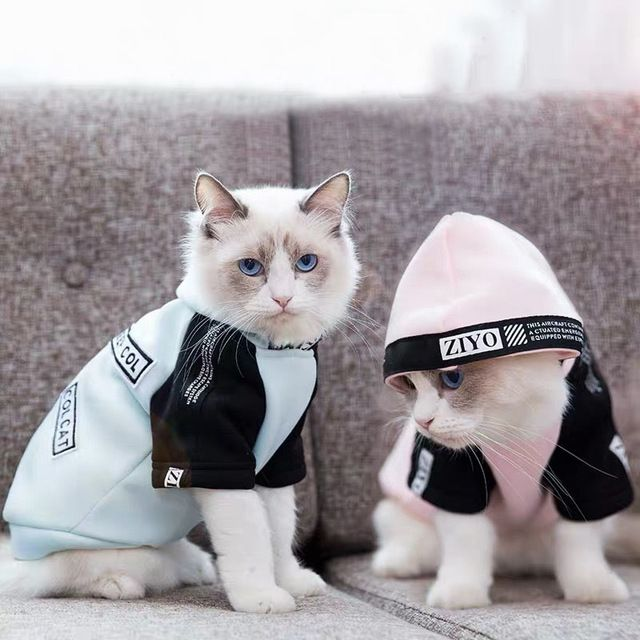 Funny STYLE Cat Clothes Soft fabric Pet Baby cat Garfield Cute Leisure sports Hairless Cat Sphynx