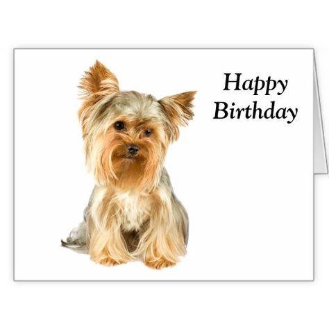 Funny Happy Birthday Yorkie
