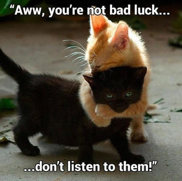 A you re not back luck don t