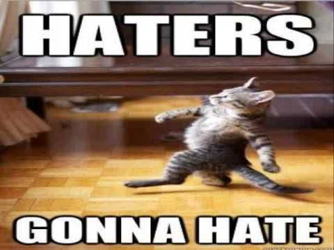 The 46 Funny Cat Memes Clean