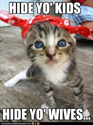 Antoine Dodson bandanna captions Cats hide yo kids internet meme reference