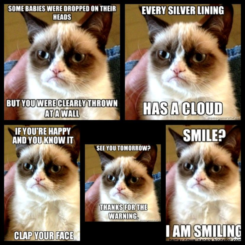 Download the Inspirational Grumpy Cat Pictures Funny Faces