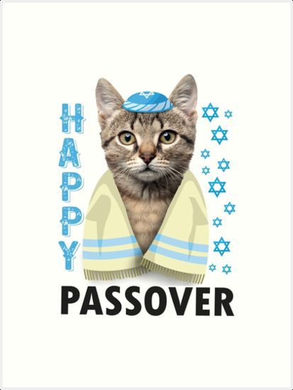 Passover Cute Cat Saying Happy Passover T Shirt Funny Jewish Pesach Holiday