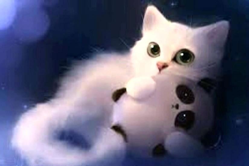 cat wallpaper cute funny cat wallpapers cute white cat wallpapers free