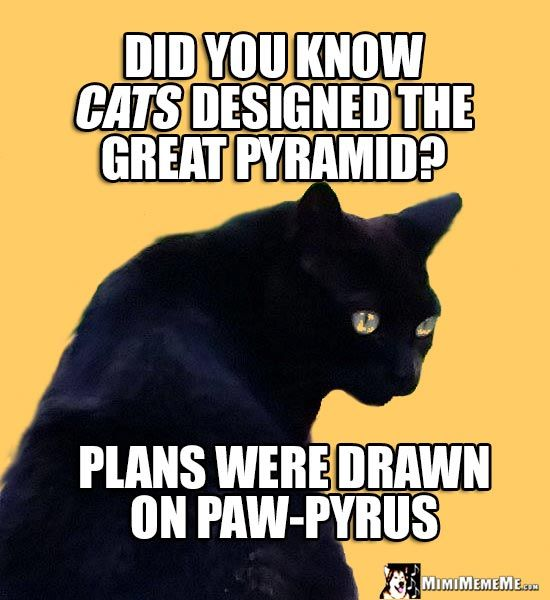 Age Old Cat Wisdom Did you know cats designed the Great Pyramid Plans were