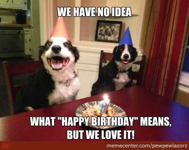funny birthday meme Google Search