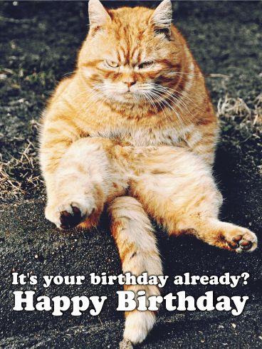 Grumpy Kitty Funny Birthday Card