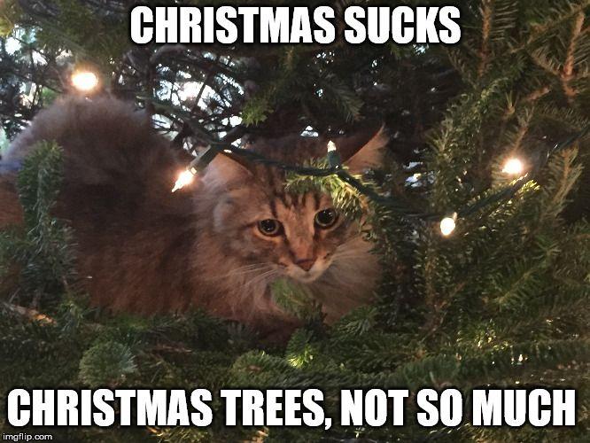 CHRISTMAS SUCKS CHRISTMAS TREES NOT SO MUCH