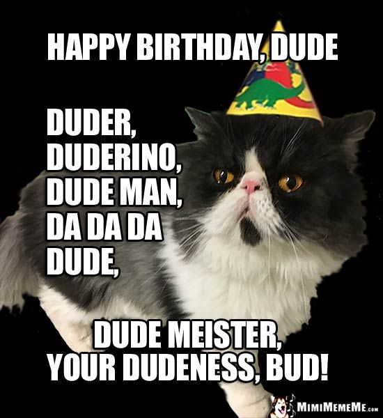 happy birthday dude images happy birthday bro funny animals wish dude bud pal man a happy