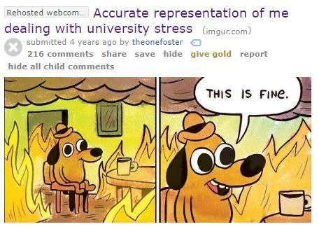 Rehosted webcm Accurate representation of me dealing with university stress imgur