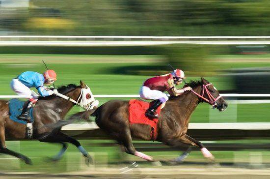 Horse Racing at the Hong Kong Jockey