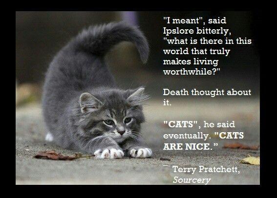 Cat Death Quotes Print