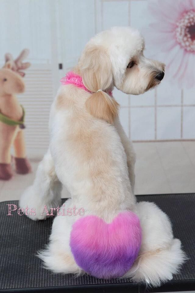 Sharing some Valentine s Day creative grooming designs by OPAWZ with all you guys and wish you a sweet day heart dogs Pinterest