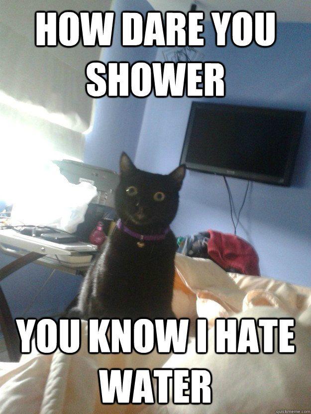 How dare you shower You know I hate water