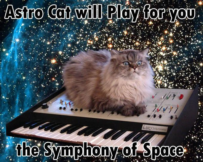 Astro Cat wilI Play for you the Symphony of Space