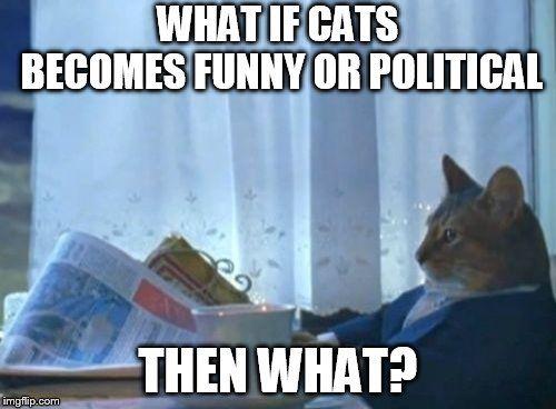 I Should Buy A Boat Cat Meme