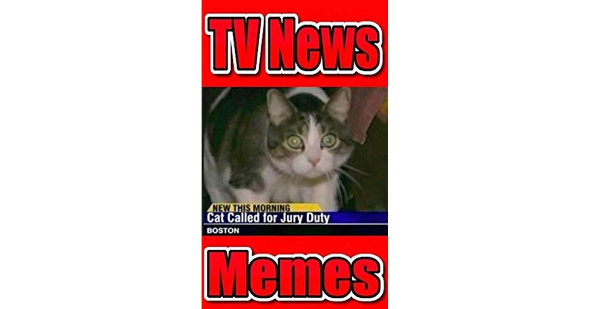 Memes TV News Hilarious Headlines Funny TV News Stupid Stories & More Awesome Funny Memes Jokes & More by Memes
