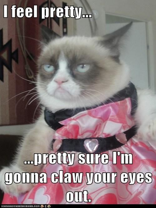 Here For More Funny Caption funny grumpy cat