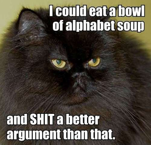 Download the Unique Cat Pictures with Funny Captions