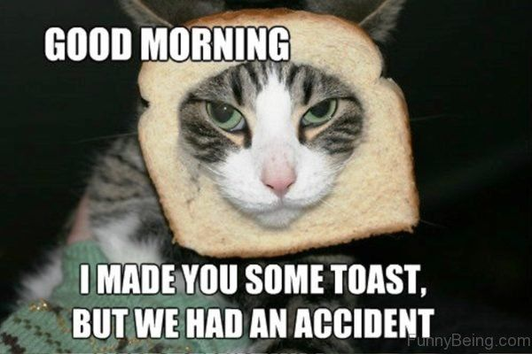 25 Good Morning Memes To Kickstart Your Day