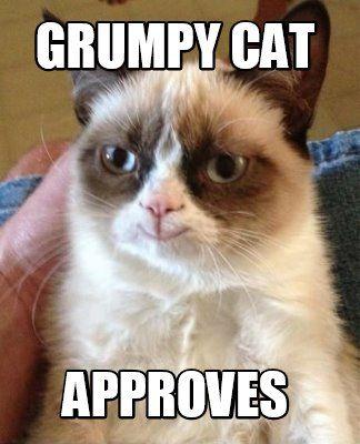grumpy cat approves2