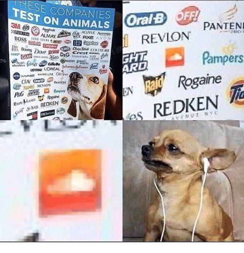 Animals Rogaine and Run ESE PANIES TEST ON ANIMALS PANTEN REVLON GHT ARD
