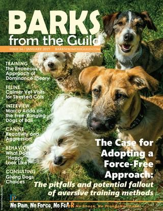 BARKS from the Guild January 2019
